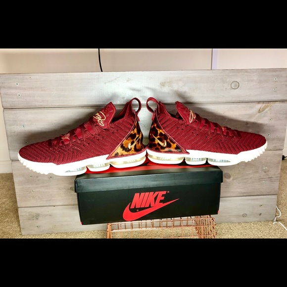 Nike Shoes | Nike Lebron Xvi 6 King 218